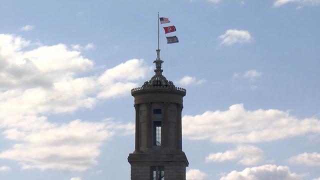 Capitol dome flag generic