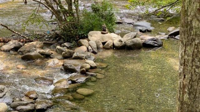 Smoky Mountain rocks