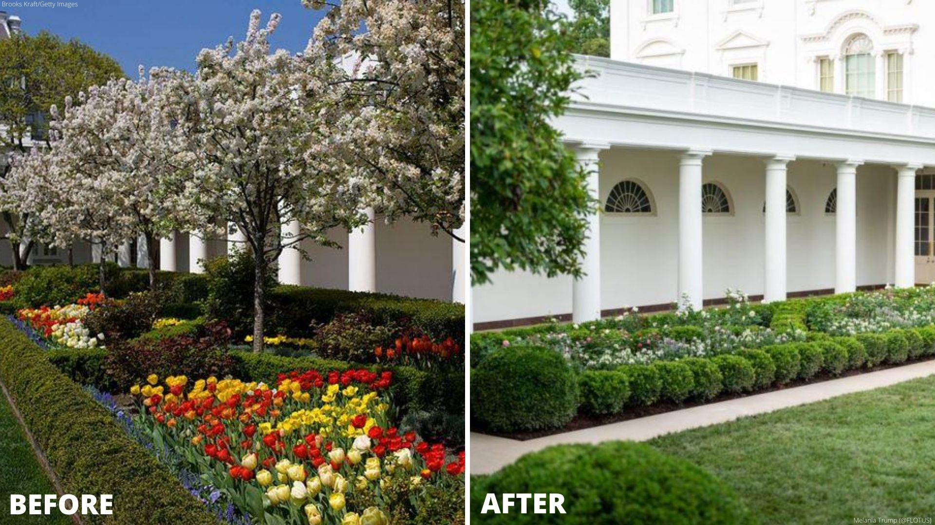 Spruced Up White House Rose Garden Set For First Lady Speech Wkrn News 2