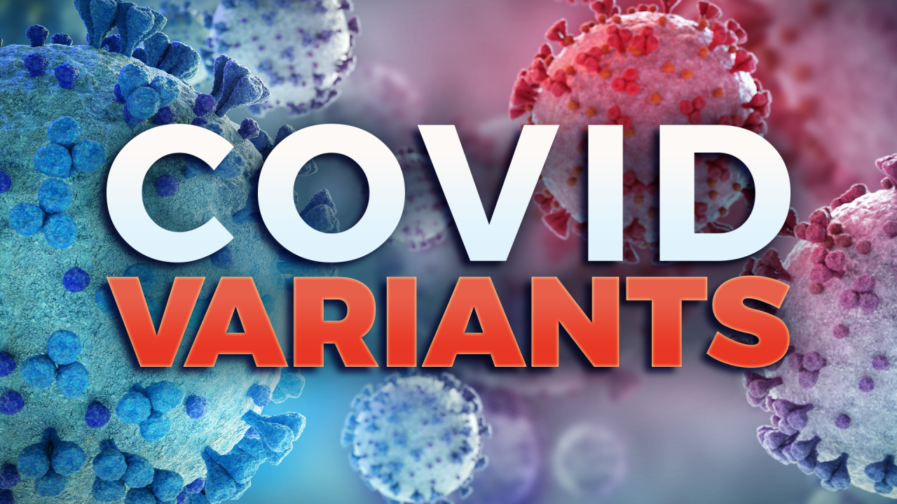 Doctor says UK COVID-19 variant will likely become widespread in Nashville - WKRN News 2