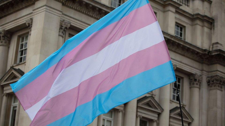 Transgender Flag Generic