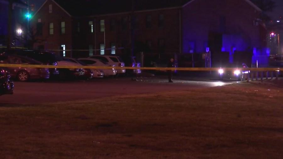 Homicide investigation Napier