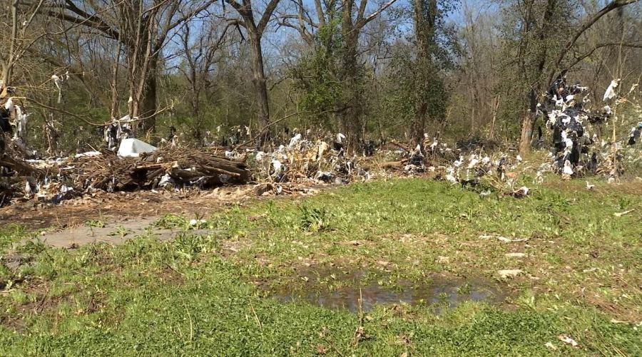 Whitsett Park trash