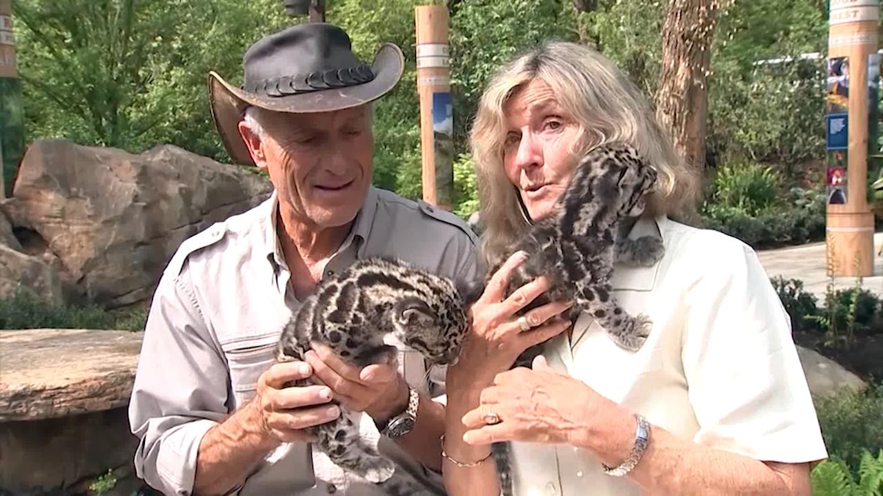 Jack Hanna visits Nashville Zoo