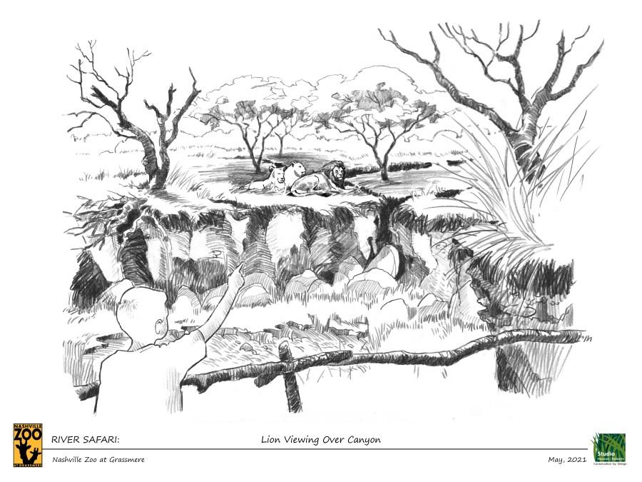 Nashville Zoo Africa Safari