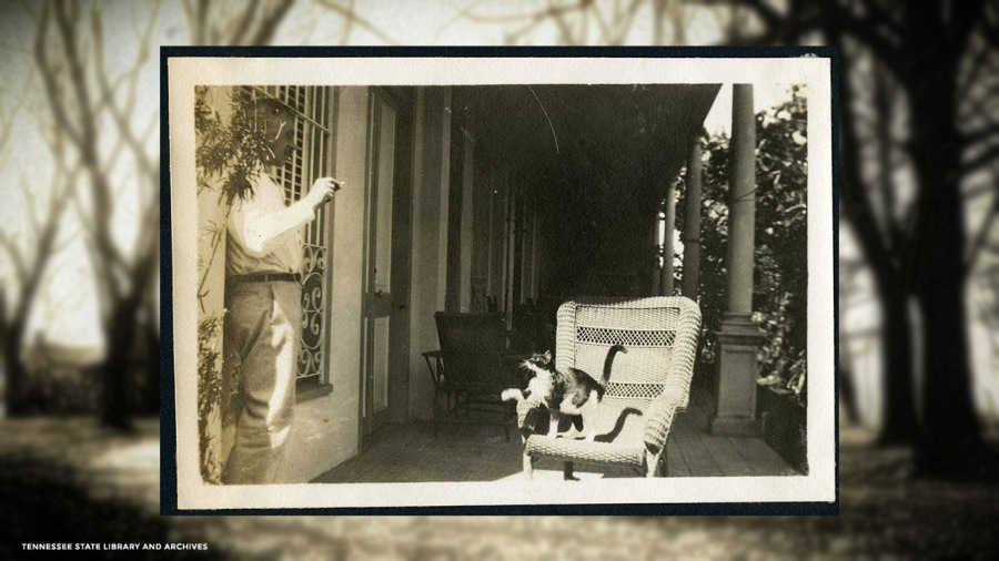 Photograph of William Croft with cat