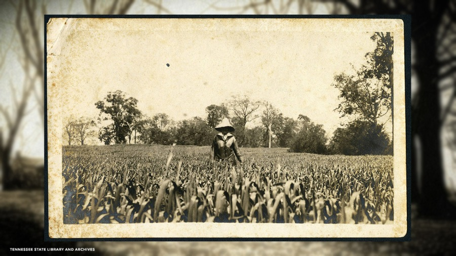 Photograph of Leila Shute Tigert in field at Grassmere