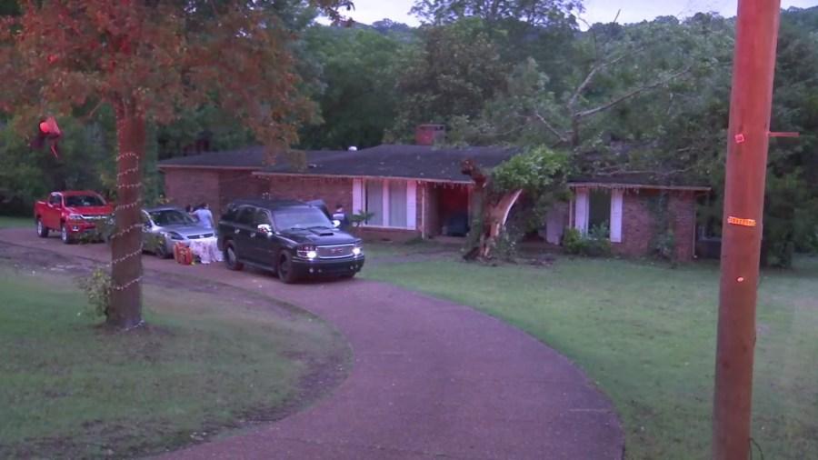 Davidson Drive tree on house