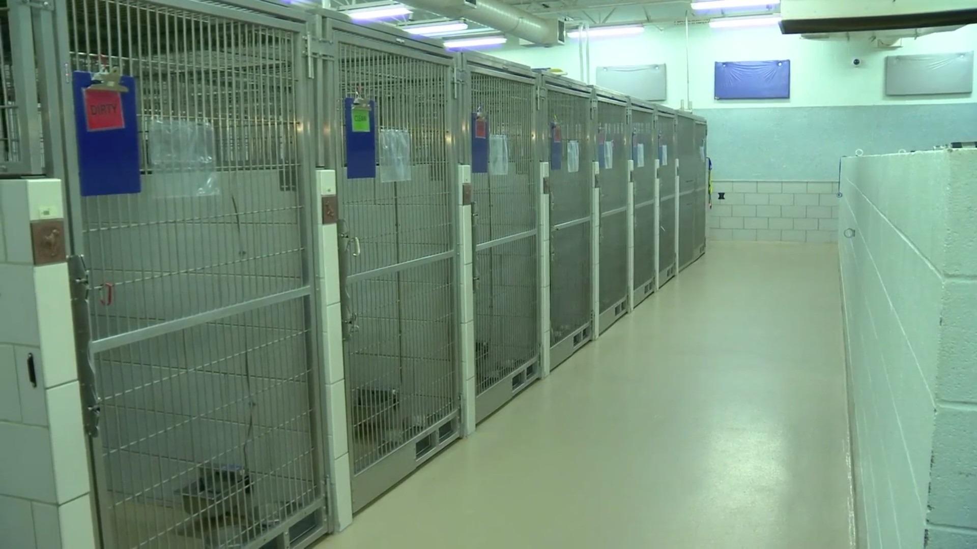 MACC Metro Animal Care and Control generic