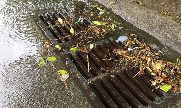 Storm drain debris